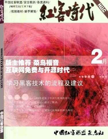 《红客时代》2011年2月刊 PDF电子书