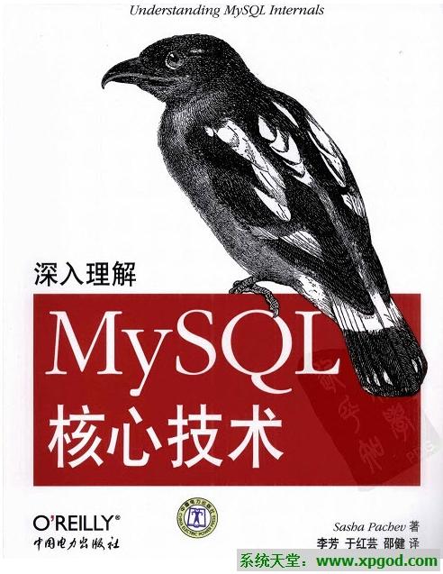 《深入理解MySQL核心技术》