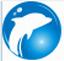 海豚网游加速器永久免费版